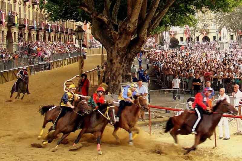Paarden in Asti Piemonte