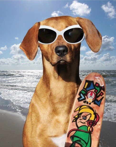 Strand vakantie Italie Italian Residence. Italiaanse kust hond